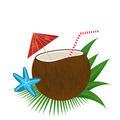 Coconut cocktail - PhotoDune Item for Sale