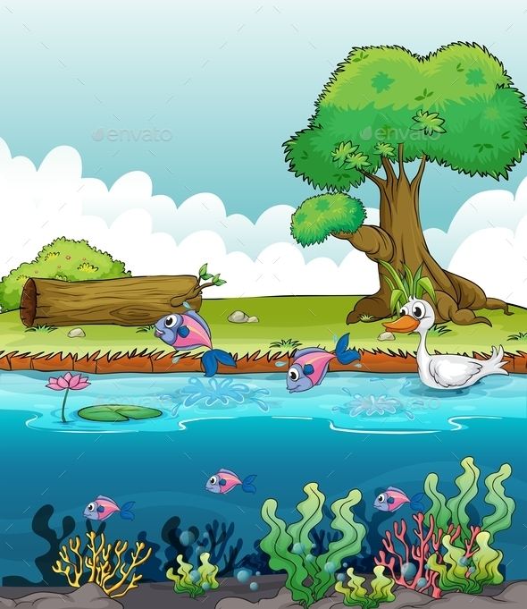 GraphicRiver Sea Creatures with a Duck 10176909