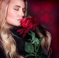 Beautiful woman smelling rose - PhotoDune Item for Sale