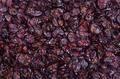 Cranberries Background - PhotoDune Item for Sale