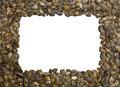 Pumpkin Seeds Frame - PhotoDune Item for Sale