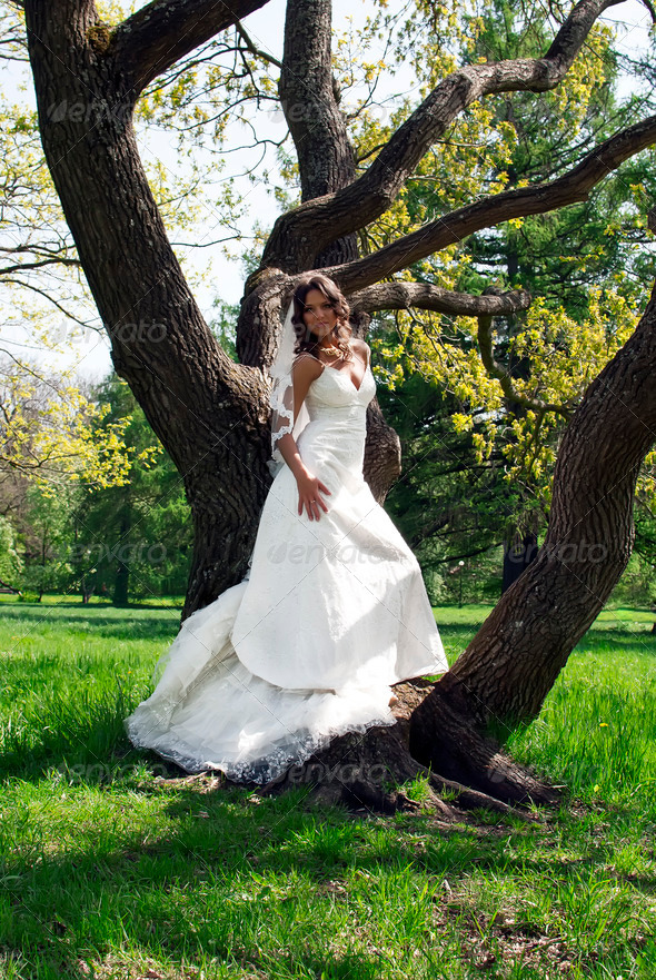 beautiful young bride leaned against a tree in the park - Stock Photo - Images