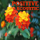 Positive Acoustic Pack