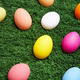 Eggs in grass - PhotoDune Item for Sale