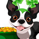 Boston Terrier Celebrates Saint Patricks Day - GraphicRiver Item for Sale