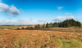 Dartmoor National Park - PhotoDune Item for Sale