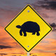 Desert Tortoise Crossing Sign with Sunrise Sky - PhotoDune Item for Sale