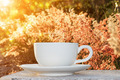 morning coffee and grass flower - PhotoDune Item for Sale