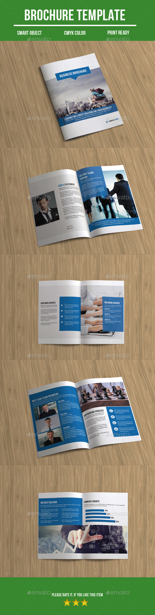 GraphicRiver Bi-Fold Business Brochure 10137960