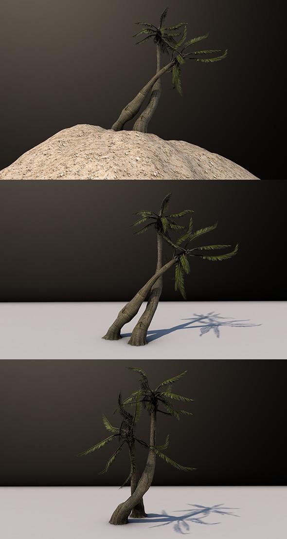 3DOcean Beach Palm Tree 10195114