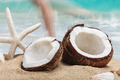 coconut on the beach - PhotoDune Item for Sale
