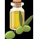 Olive Oil - GraphicRiver Item for Sale