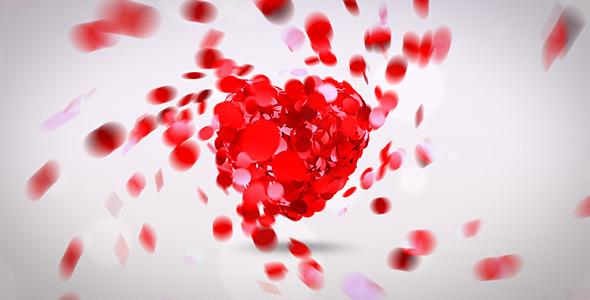 Heart Logo Sting