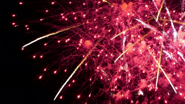 VideoHive Fireworks Red Gold 18710337