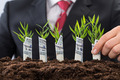 Businessman Holding Saplings Covered With American Dollar - PhotoDune Item for Sale