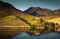 Douro Landscape IV - PhotoDune Item for Sale