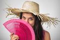 Pink Fan - PhotoDune Item for Sale