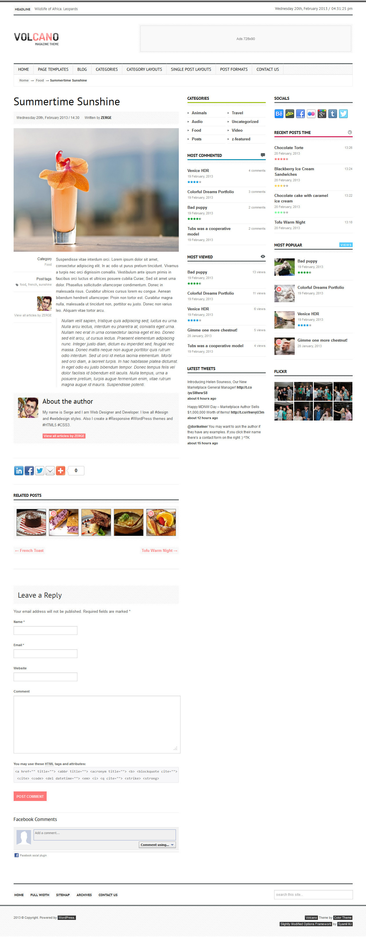 Volcano - Responsive WordPress Magazine / Blog - Single