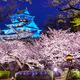 Osaka Castle - PhotoDune Item for Sale