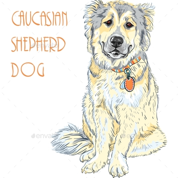 GraphicRiver Caucasian Shepherd Dog Breed 10227543