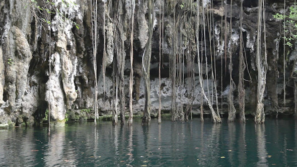 Cenote Sinkhole Mexico Wonder Clear Water 2