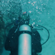 Diving In Cozumel Caribbean Sea Fish Mexico 4 - VideoHive Item for Sale