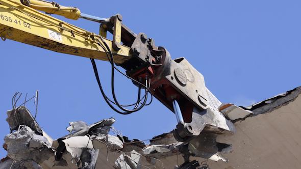 Crane Munching 00