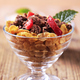 Bowl of cornflakes and chocolate granola - PhotoDune Item for Sale