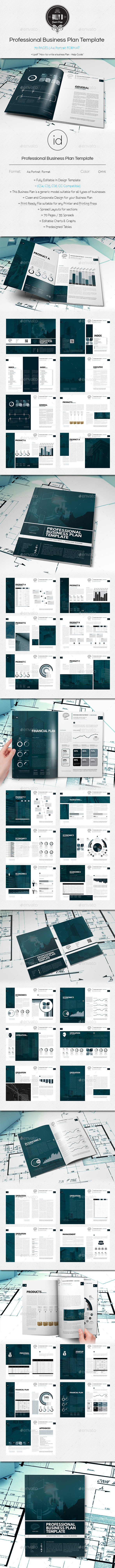 GraphicRiver Professional Business Plan Template 10231493