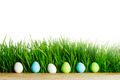 Row of Easter Eggs in grass - PhotoDune Item for Sale