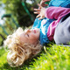Portrait of cute blonde little girl playing outdoors - PhotoDune Item for Sale