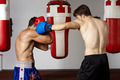 Kickbox fighters sparring in the gym - PhotoDune Item for Sale