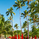 Sun beds on tropical beach - PhotoDune Item for Sale