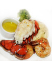 Lobster Tail And Shrimps - PhotoDune Item for Sale