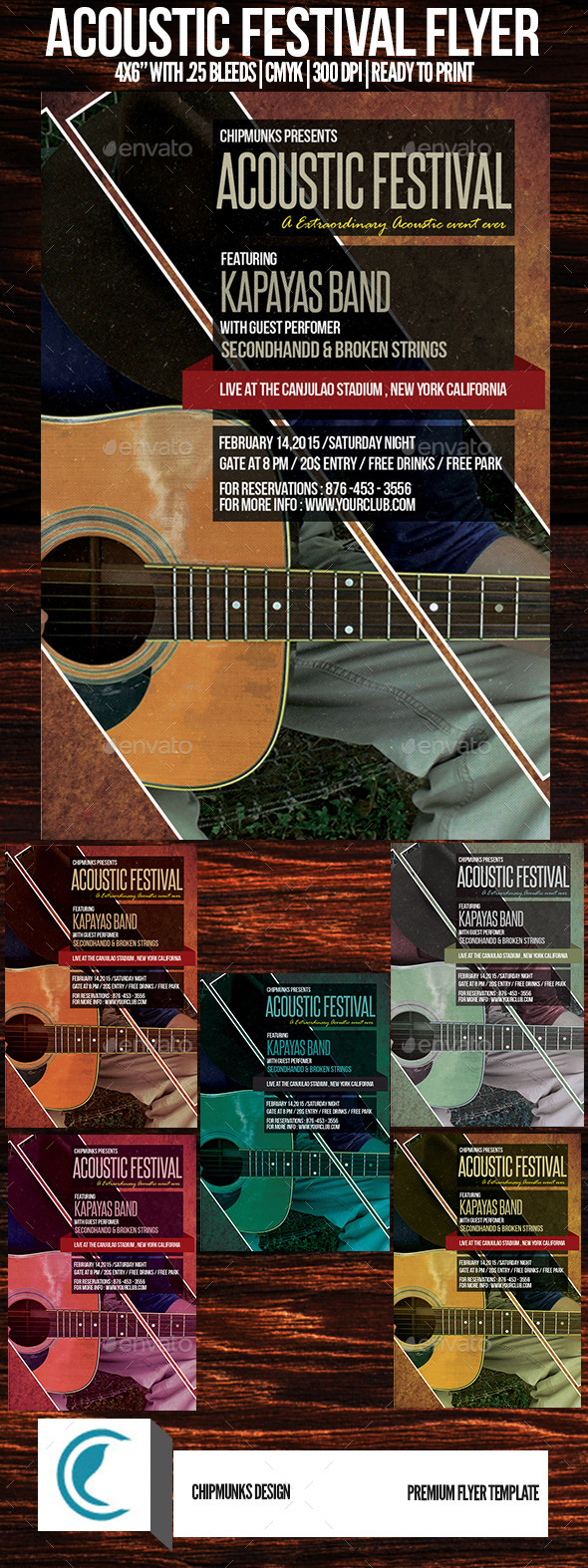 GraphicRiver Acoustic Festival Flyer 10259687
