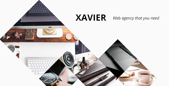 Xavier Portfolio and Agency WordPress theme