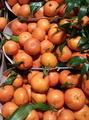 Tangerines - PhotoDune Item for Sale