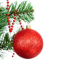 Red ball on the branch of a Christmas tree on white background. - PhotoDune Item for Sale