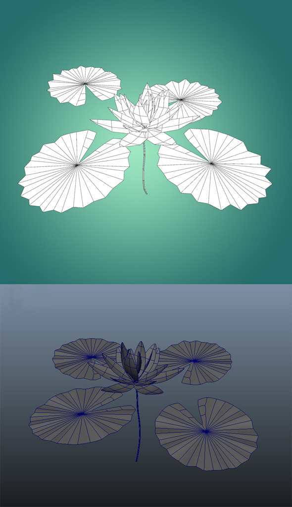 3DOcean Low Poly Water Lily Flower 10261014
