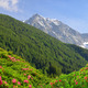 View of the mountains from the valley Antholzertal. - PhotoDune Item for Sale