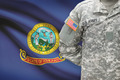American soldier with US state flag on background - Idaho - PhotoDune Item for Sale