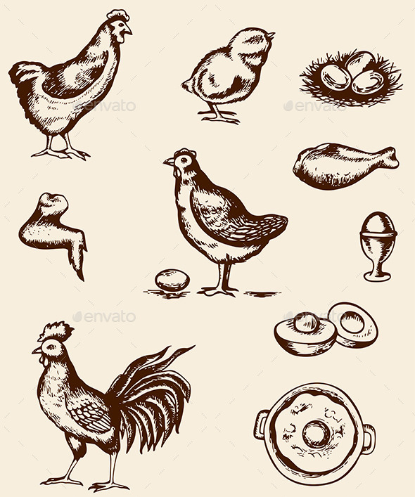 GraphicRiver Chicken and Eggs 10265786