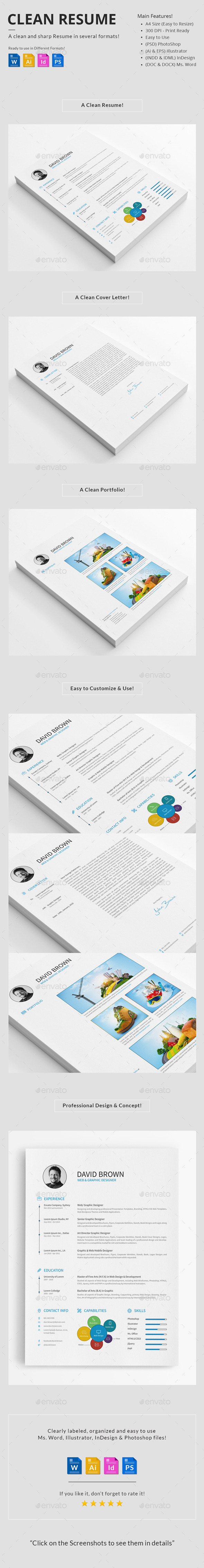 GraphicRiver Clean Resume 10267531