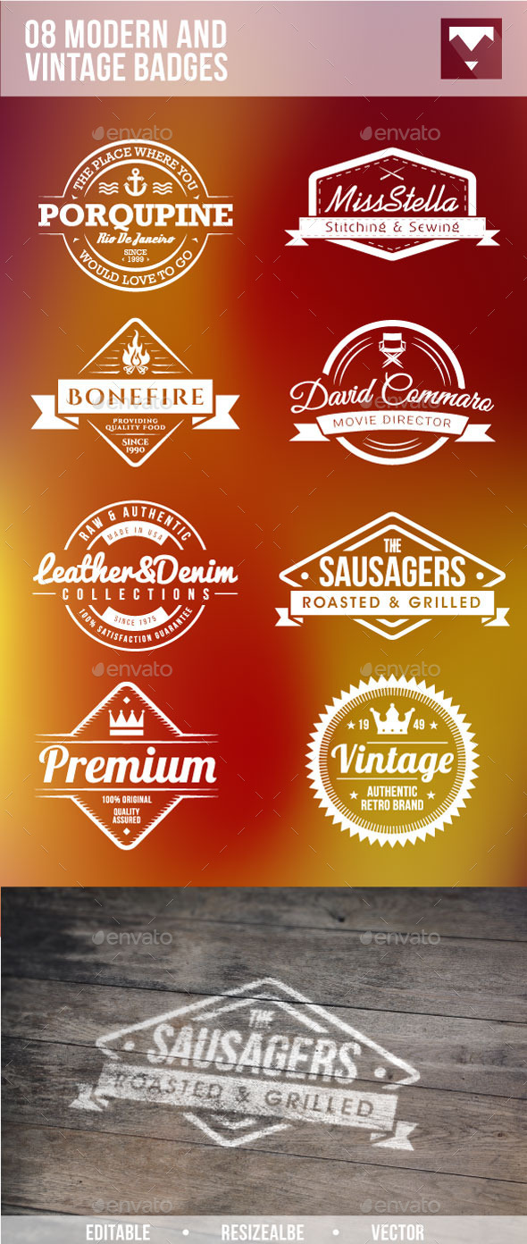 GraphicRiver 08 Modern And Vintage Badges 10268052