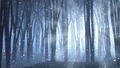 Forest scene on a winters nights - PhotoDune Item for Sale