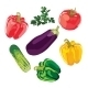 Set of Vegetables - GraphicRiver Item for Sale