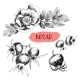Briar Wild Rose - GraphicRiver Item for Sale