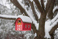 Bird house on tree in winter - PhotoDune Item for Sale