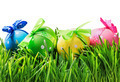 Easter eggs on the grass isolated on white - PhotoDune Item for Sale