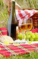 Wine cheese bread and fruits - PhotoDune Item for Sale